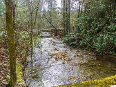 2750 McMahan Sawmill Road, Sevierville, TN 37862 - Listing #:222909