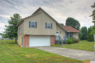 Sevierville Single Family Home For Sale: 1605 Country Meadows Dr.