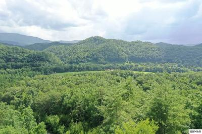 Residential Lots & Land For Sale: Lots 90 & 91 Bear Track Way