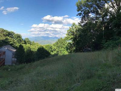 Gatlinburg Residential Lots & Land For Sale: 1143 Upper Alpine Way