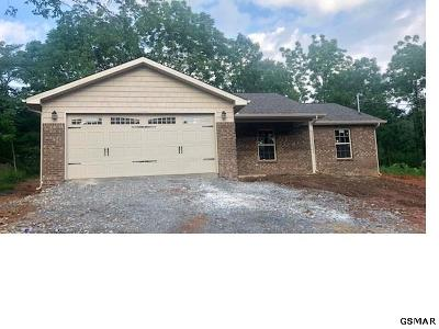 Sevierville TN Single Family Home For Sale: $205,000