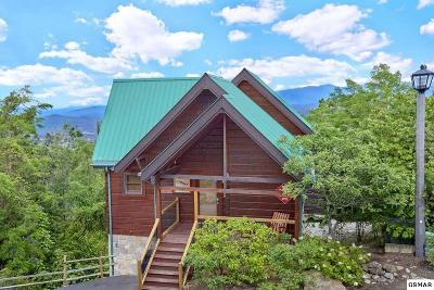 Gatlinburg Single Family Home For Sale: 1270 Bear Cub Way