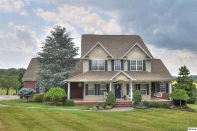 Sevierville TN Single Family Home For Sale: $632,900