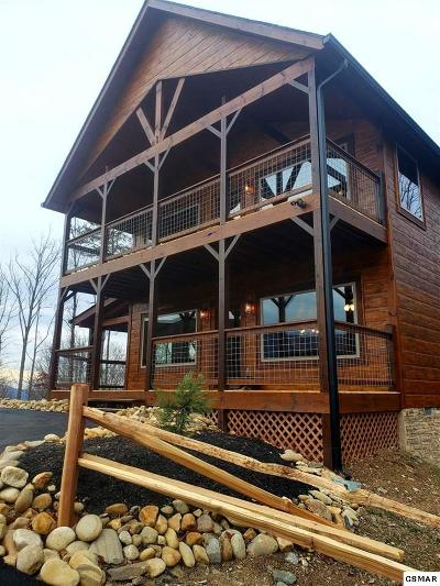 Gatlinburg Single Family Home For Sale: 840 Deer Path Ln