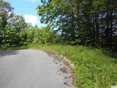 Gatlinburg Residential Lots & Land For Sale: Lot 14 Eagle Trail