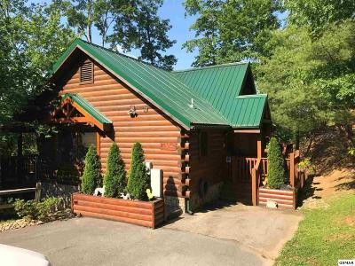 Gatlinburg Single Family Home For Sale: 847 High Mountain Way