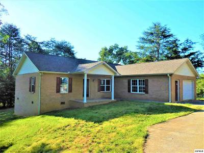Sevierville Single Family Home For Sale: 510 Maplewood Circle