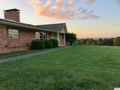 Hamblen County Single Family Home For Sale: 421 Callaway Dr