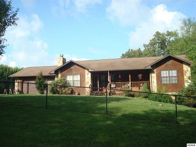 Sevierville Single Family Home For Sale: 2520 Amanda Ln