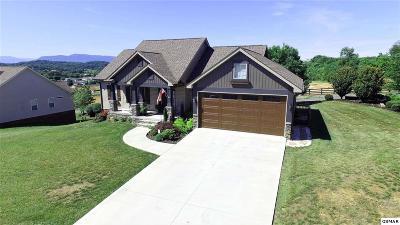Sevierville Single Family Home For Sale: 2806 Alden Glenn Ct