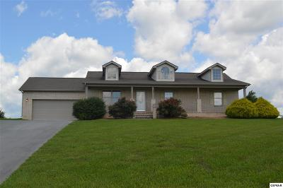 Kodak Single Family Home For Sale: 724 Tuckahoe View Trl