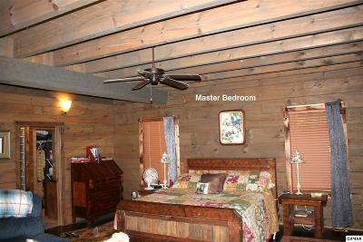 4730 Indian Camp Creek, Cosby, TN 37722 - Listing #:223009