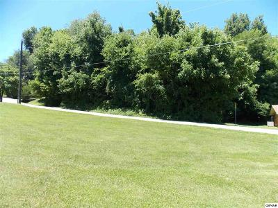Sevier County Residential Lots & Land For Sale: 559 Happy Hollow Ln