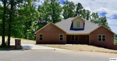 Sevierville Single Family Home For Sale: 1704 Sierra Ln