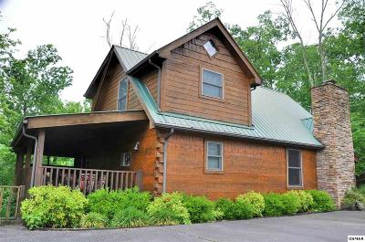 Dandridge TN Single Family Home For Sale: $299,000