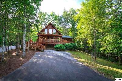 Sevierville Single Family Home For Sale: 2324 Bogle Spring Loop