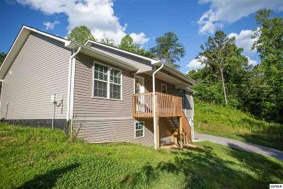 Sevierville Single Family Home For Sale: 1268 Tramel Road