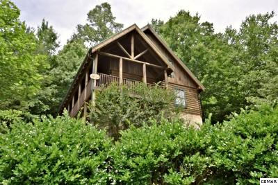 Pigeon Forge Single Family Home For Sale: 4407 Forest Vista Way
