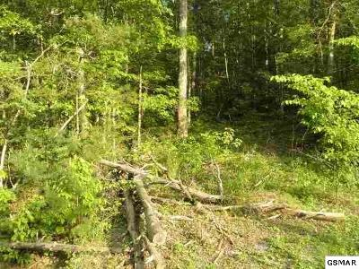 Cocke County Residential Lots & Land For Sale: Lot 20 Classic Way