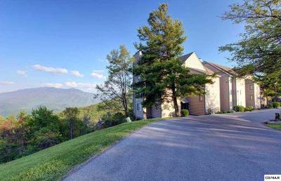 Gatlinburg Condo/Townhouse For Sale: 1260 Ski View Dr. #8301