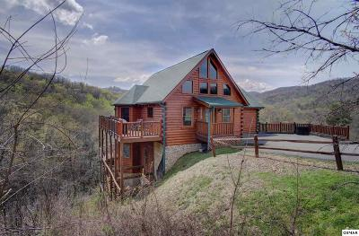 Gatlinburg Single Family Home For Sale: 1025 Street Of Dreams