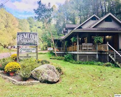 Gatlinburg Single Family Home For Sale: 725 Buckhorn Road