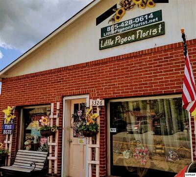 Pigeon Forge Commercial For Sale: 3326 S River Road