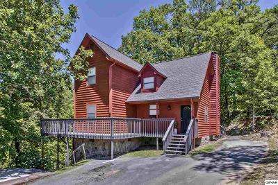 Sevierville Single Family Home For Sale: 3059 Engle Town Rd