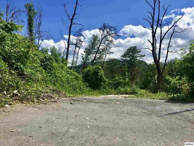 Gatlinburg Residential Lots & Land For Sale: 754 Widows Knob