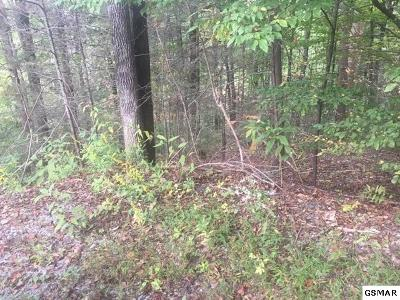 Sevier County Residential Lots & Land For Sale: Lots 19 And 20 Sulpher Springs Way