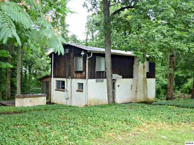 Dandridge Single Family Home For Sale: 1527 Riverfront Cr.