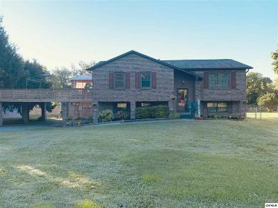 Sevier County, Jefferson County, Cocke County, Blount County, Knox County Single Family Home For Sale: 528 Merritt Road
