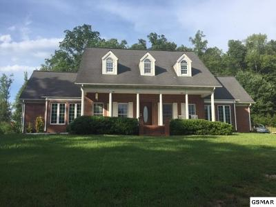 Cocke County Single Family Home For Sale: 172 Green Forest Rd