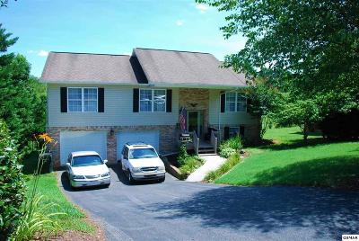 Sevier County Single Family Home For Sale: 1485 Jasmine Trail