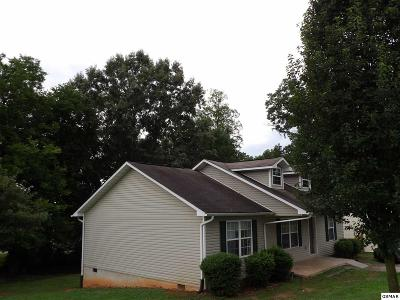 Sevier County Single Family Home For Sale: 805 Farnsworth Ct
