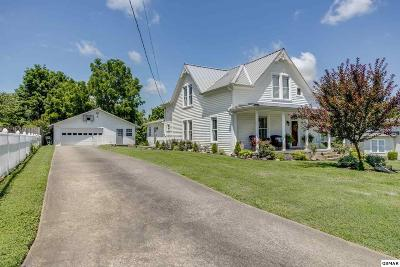 Sevier County Single Family Home For Sale: 705 Broad Ave