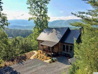 Sevier County, Jefferson County, Cocke County, Blount County, Knox County Single Family Home For Sale: 2439 Six Mile Rd
