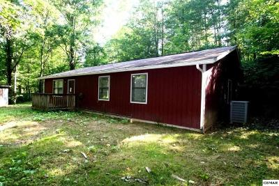 Sevier County Single Family Home For Sale: 3605 Old Mountain Rd