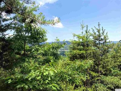 Sevier County Residential Lots & Land For Sale: Lot 27 Aryel Overlook Way