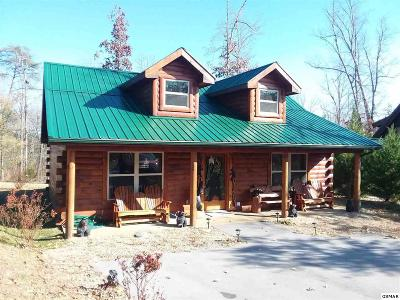 Sevierville Single Family Home For Sale: 2756 Murray Ridge Rd