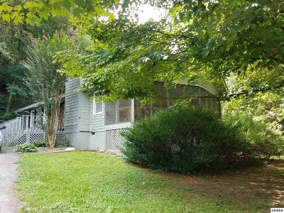 Sevierville Single Family Home For Sale: 3049 N Clear Fork Rd