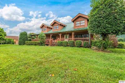 Sevierville Single Family Home For Sale: 3114 J.h. Headrick