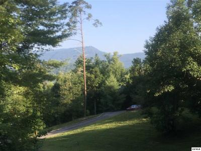 Sevierville Single Family Home For Sale: 23 Mountain Lodge Way