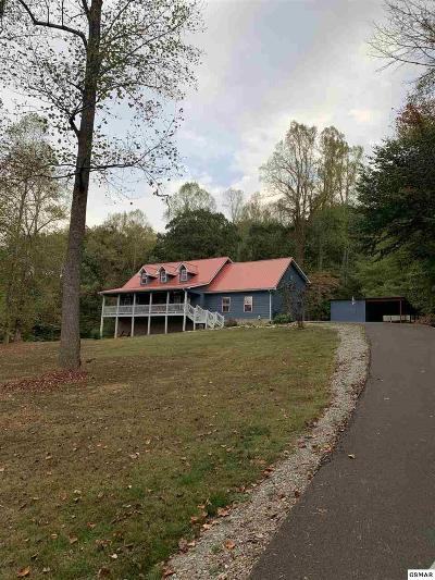 Sevierville Single Family Home For Sale: 3319 Thomaswood Trl