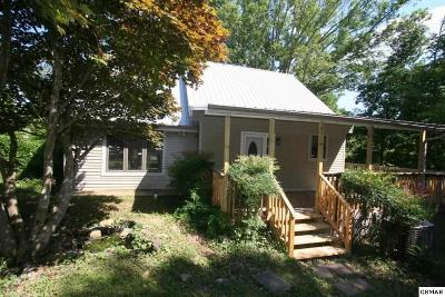 Single Family Home For Sale: 1705 Mullins Chapel Rd