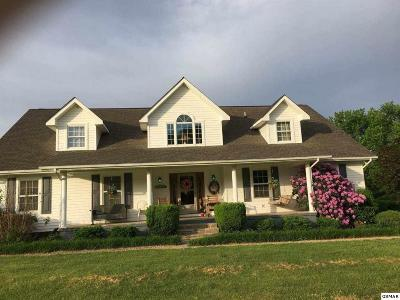 Sevierville Single Family Home For Sale: 3450 Valley View Road