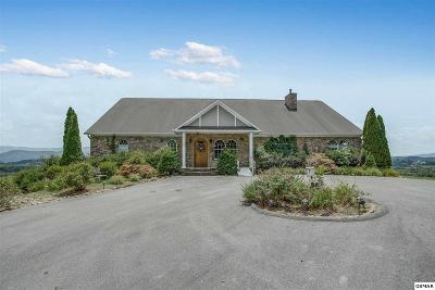 Sevierville Single Family Home For Sale: 115 Ruth Lane