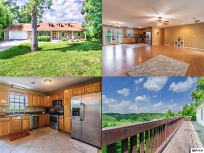 New Market Single Family Home For Sale: 1008 Baldwin View Drive