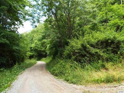 Residential Lots & Land For Sale: Parcel 033.01 Johns Creek Road