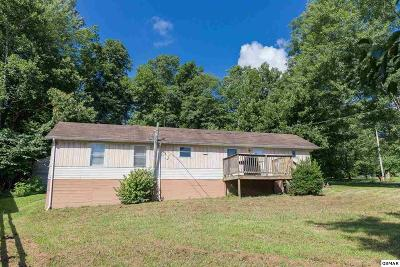Sevierville Single Family Home For Sale: 3039 Ogles View Rd